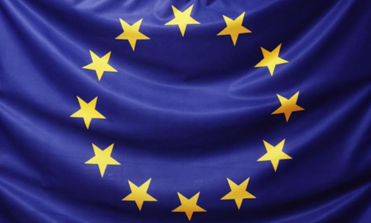 Teme de campanie pentru europarlamentare