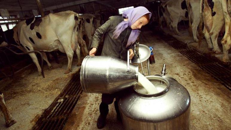 O lingurița de rahat intr-un butoi cu lapte